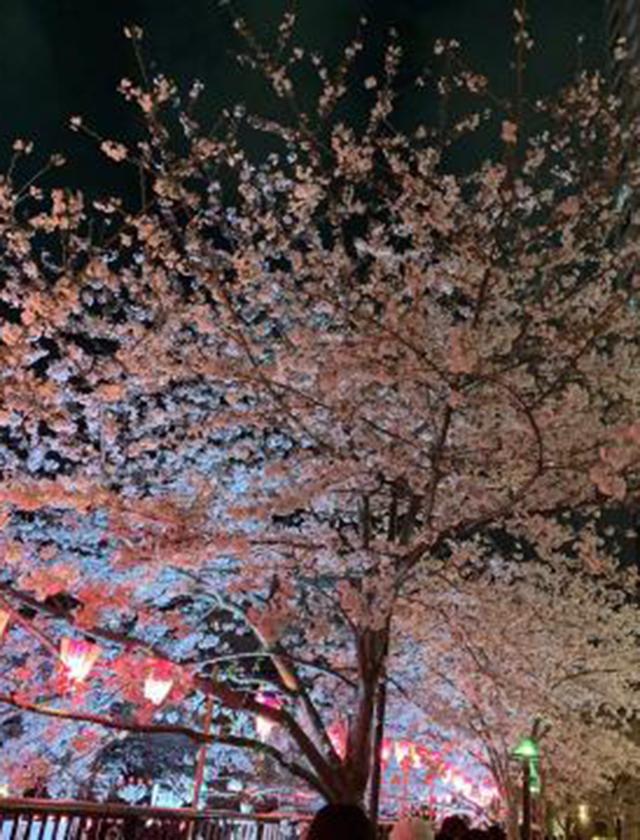 千葉風俗・千葉市発デリヘル風俗【キャンパスサミット千葉店】ありさ【お礼です♡】